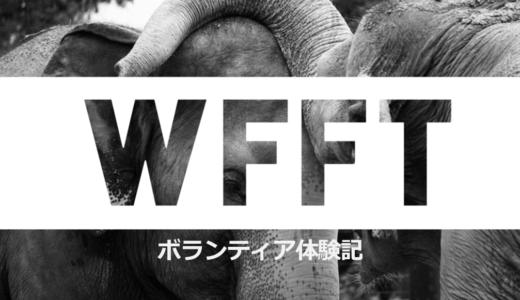 タイのWFFTで野生動物保護のボランティア!