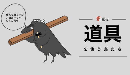 道具を使う鳥たち